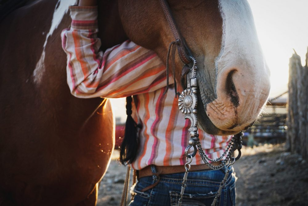 Ceily Rae Photography & Design Western Photography